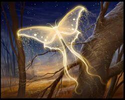 Soul-butterfly.jpg