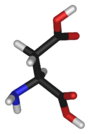 Chemical structure of the amino acid aspartate