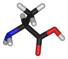 L-alanine-3D-sticks.png