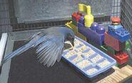 Caching bird