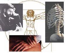 Chiropractic5.JPG