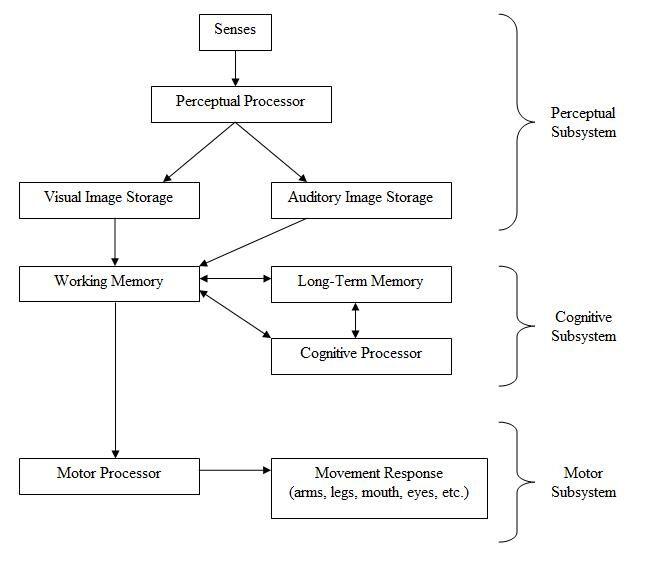 HumanProcessorModel.jpg