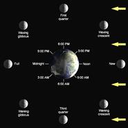 Lunar-Phase-Diagram