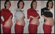 Baby bump progression-1-