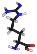 3D structure of L-arginine