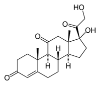 Chemical structure of cortisone