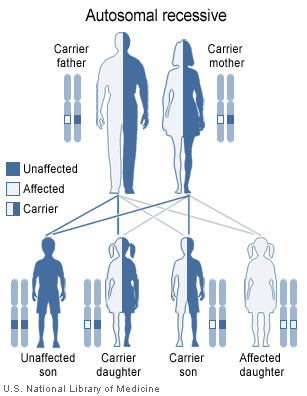 Hemochromatosis