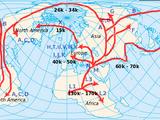 Migratory behavior (animal)