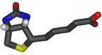 Biotin3d.png