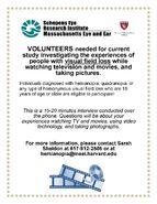 TVwLV RecruitmentFlyer TVsurvey March2014