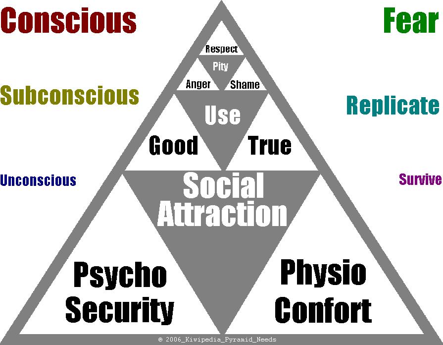 Social Attraction
