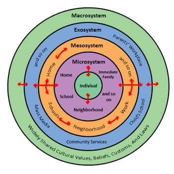 Urie Bronfenbrenners Bioecological Model.png