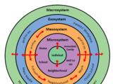 Bioecological model