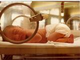 Prenatal memory