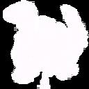 Mc bushdinosaur