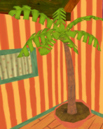 Palm tree scrubbed