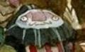 Edgar head