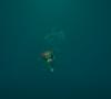 Razswimming
