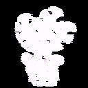 Bv plant3