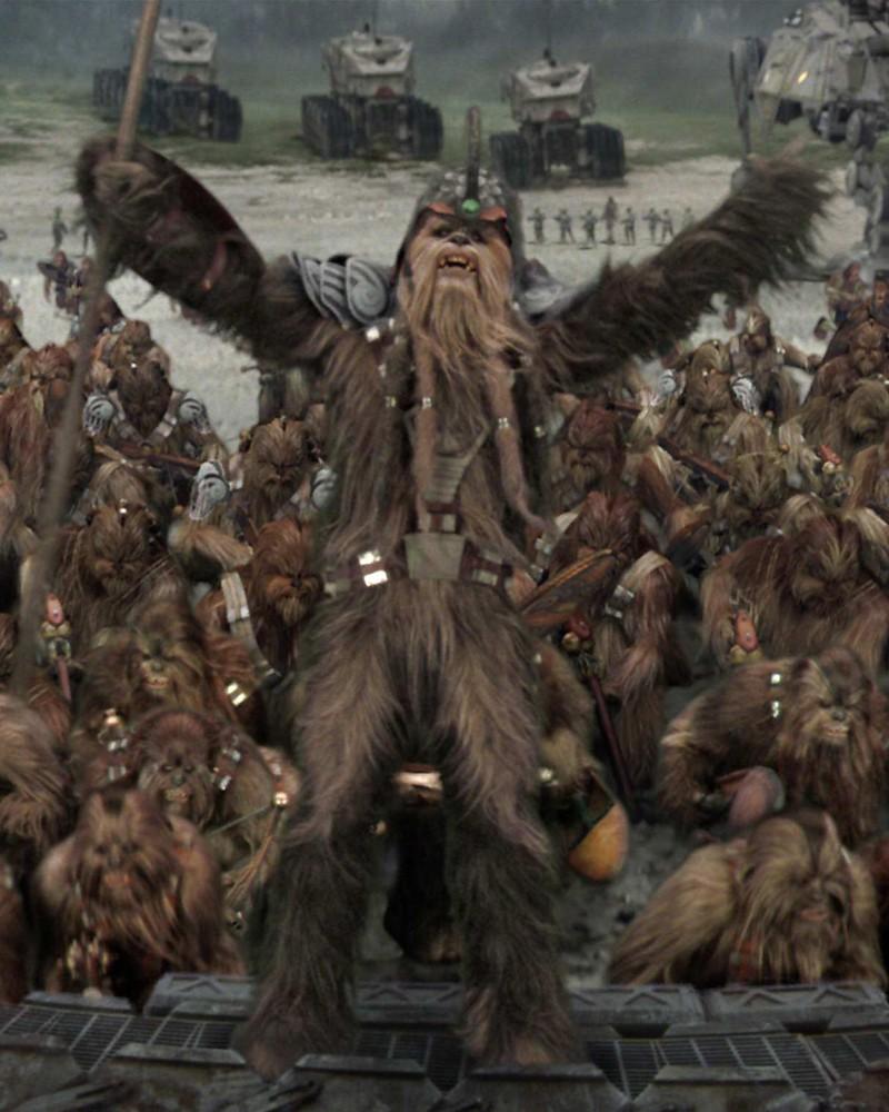 Ancião Wookiee