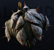 Skungus-TacticalGuide