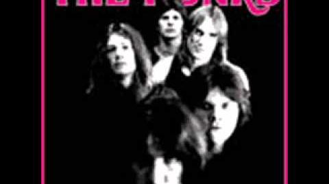 The Punks - Q1 (1973 Proto Hardcore Punk)