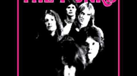 The Punks - Drop Dead (1973 Raw Detroit Proto Punk - Psych Punk -Proto Hardcore Punk)