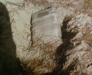 Toulon's unearthed coffin