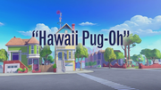 Hawaii Pug-Oh title card.png