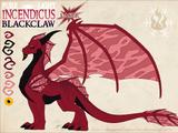 Doucheicus Blackclaw