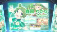 Prad3-48-07-wakana-panel