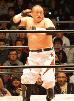 Hoshino.jpg