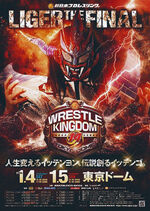 Wrestle Kingdom 14 poster.jpg