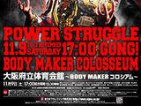Power Struggle (2013)