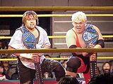 WEW Hardcore Tag Team Championship