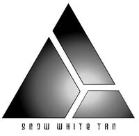 SWT Icon (Digital).JPG