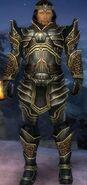 Comander Guardian