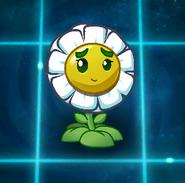 Balloon Bloom Fandom Image