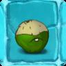 Hairy Coconut