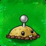 Potato Mine PvZ1