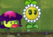 New Balloon Bloom Being Annoyed