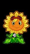 SolarFlareBYL