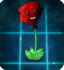 PartyPoppy.png
