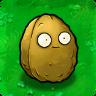Wall-nut PvZ1