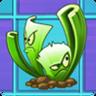 Celery Stalker2.png