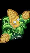 Kernel Corn BYL