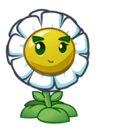 Smiling Balloon Bloom
