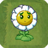 BalloonBloomLawnTileSmall
