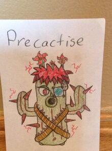 Precactise-0.jpeg