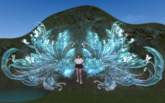 Mirror Flower Butterfly.png